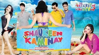 Shaukeen Kaminay Latest Hindi Full Movie 2017 || Latest Bollywood Full Movies 2017 New Releases