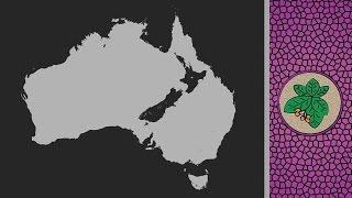 Why isn't New Zealand part of Australia anyway?