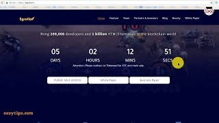 Egretia project overview - 5 days before the Puclic Sale starts