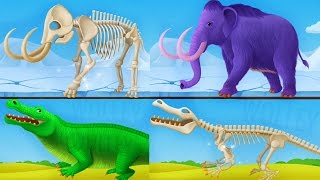 Children Learn About Dinosaurs - Dinosaur Park 2 Kids Games - Educational Videos Games for Children