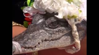 Mayor of Mexican fishing town marries a crocodile