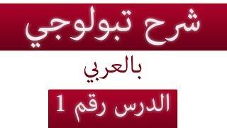 شرح مادة توبولوجي باللغة العربية Topology | الدرس الأول