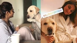 Jennifer Winget CUTE Moments Playing with DOGS | Bepannah