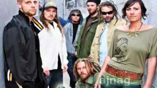 Soul Majestic - California Reggae Band and Medical Cannabis Activists