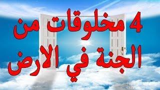 أشياء من الجنة نزلت علي الارض في السعودية والعراق ومصر ؟ وموجدة الي الأن