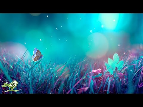 Xxx Mp4 Relaxing Piano Music Beautiful Music For Sleeping Studying Amp Relaxation 3gp Sex