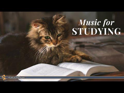 Classical Music for Studying & Brain Power Mozart Vivaldi Tchaikovsky