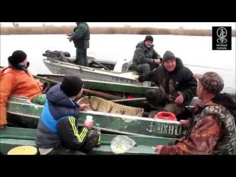 рыбалка на аляудах 2016