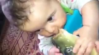 منوعات 23 طفل يقبل سمكة *-*