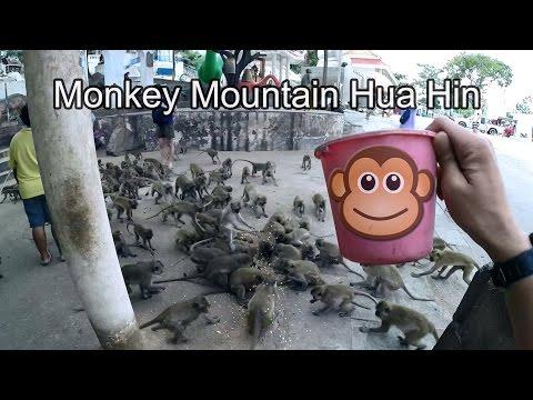 Hua Hin Monkey Mountain Wat Khao