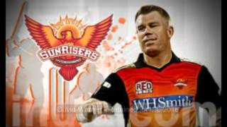 IPL - Sunrisers Hyderabad Full Team 2016 ( Yuvraj Singh Included )