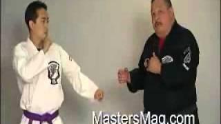 American Kenpo Karate - Frank Trejo techniques