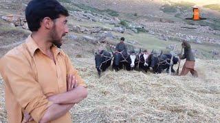 Culture of Gilgit Baltistan - Balti Khoyo - بلتی کھویو - گلگت بلتستان کی ثقافت