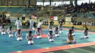 Kukkiwon Taekwondo Demonstration (2012 Belgian Open)
