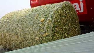 Aero Wrap Ultra High UV Silage wrap - wrapping maize bale in Turkey