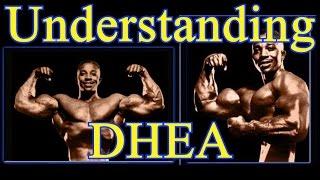 Understanding DHEA - Leroy Colbert