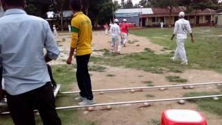 Dhanbari collegiate School