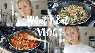 VLOG | WHAT I EAT IN A DAY & VEGETARIAN FOOD SHOP | EMILY ROSE