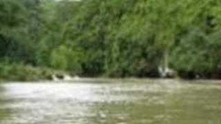 Baleleng- Visayan Song
