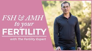What does FSH and AMH mean? Get pregnant faster understanding FSM and AMH