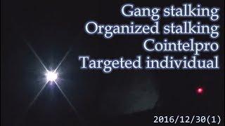 集団ストーキング被害者の記録 2016.12.30(1)  Gang Stalkng Organized stalking Cointelpro Targeted Individuals