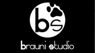 Intro Brauni Studio
