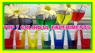 7 COLORFUL EXPERIMENTS | Easy Kids Science