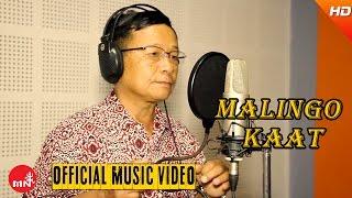 Best Nepali Lok Geet Songs || Malingo Kaat by Jeeten Rai