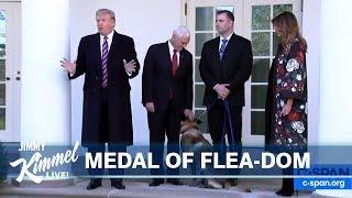 Trump Honors Dog, Giuliani Has Insurance & Bloomberg Joins Race