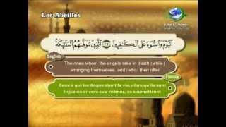 Surat An-Nahal-Sheikh Saad Al Ghamdi