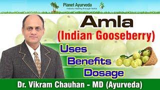 Amla (Indian Gooseberry)- Benefits, Uses, Dosage & Side Effects- Amla Supplements Manufacturer