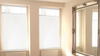 Cordless Top Down Bottom Up Pleated Shades