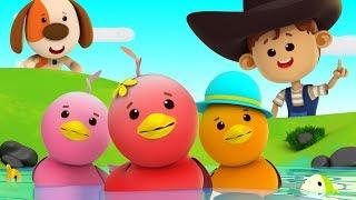 Funny Little Ducks | Five Little Ducks | Little Eddie Cartoons | Videos For Children by Kids Tv