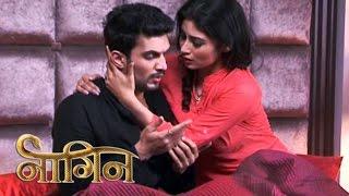 Naagin 15th February 2016, Shivanya Says I LOVE YOU To Ritik