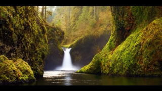 "Relaxing Music: Peaceful Music, Instrumental Music, ""Nature"