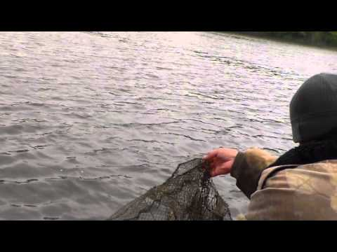 рыбалка бобровые ямы