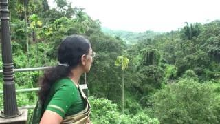 Scenic place Thusharagiri waterfalls kerala