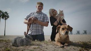 WHICH PET MAKES THE BEST WINGMAN? Feat. Stuart Edge | Pets Add Life