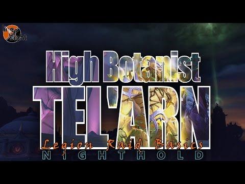 High Botanist Tel'arn: Two Minute Tips | Normal/Heroic | Legion Raid Basics