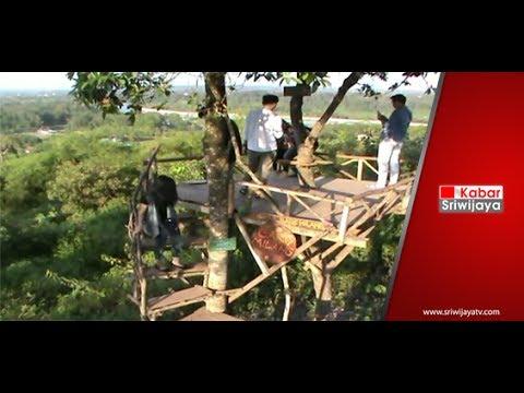 Objek Wisata Rumah Pohon Dan Ayunan Awan Di Kabupaten Lahat