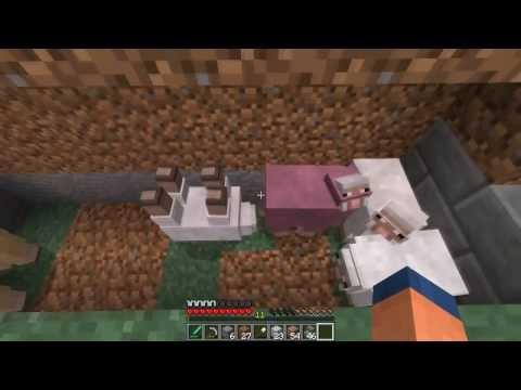 Xxx Mp4 Porno Ovino En Minecraft 3gp Sex