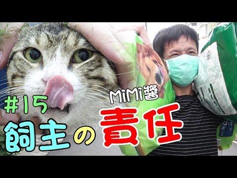 Xxx Mp4 『飼主的責任』收養貓咪,就要愛他一輩子 MiMi醬 Cat Story 15 3gp Sex
