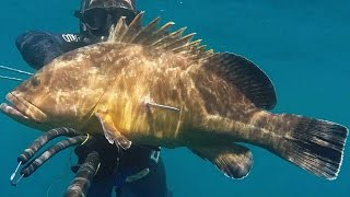 Pesca Submarina  MERO 9 Kg  a - 39 M PROFUNDIDAD -  ALICANTE . DEEP SPEARFISHING  GROUPER 39 MT