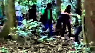 The haunted jungle