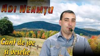 Adi Neamtu- Invartite din Marginimea Sibiului