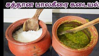 சத்தான பாலக்கீரை கடையல்| Palak Keerai Kadaiyal In Tamil| Palak Keera Recipe