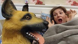 LERAYA ACIMADIK YİNE ŞAKALADIK, Eğlenceli çocuk videosu