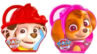 Best Learning Colors for Children Video  - Paw Patrol Marshall & Skye Activity Cases Coloring Toys