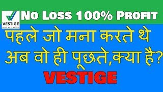 No Loss business - Vestige   Vestige International business with 100% profit   Best MLM Company  