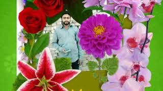 Umar Iqbal SB